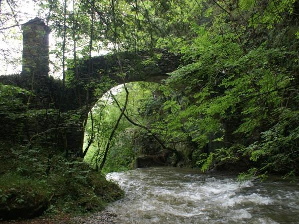 Ecomuseo Val Sanagra - Il Ponte Tobi, ripreso nel Logo